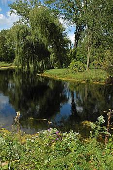 LeeAnn McLaneGoetz McLaneGoetzStudioLLCcom - Summer Pond on the Trail