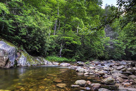 Summer River North Carolina by Nick  Shirghio