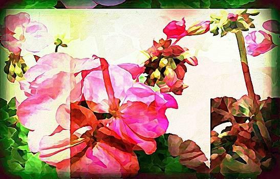 Summertime Pink by Yvette  Christine