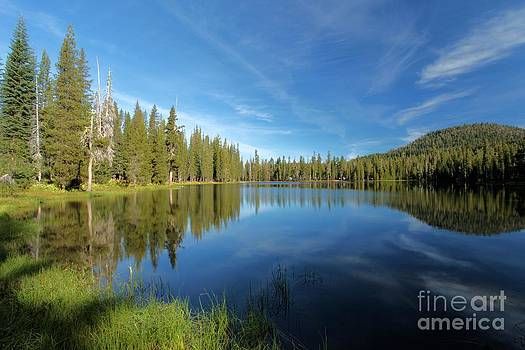 Adam Jewell - Summit Lake Blues