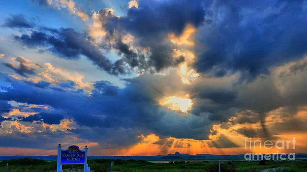Sun setting on a Wonderful Day by Nancie DeMellia