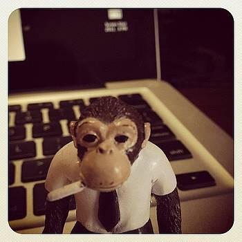 Sunday Morning Monkey by Jeff Madlock