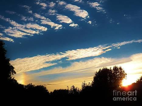 Judy Via-Wolff - SunDog Sky