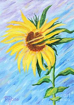 Pauline Ross - Sunflower 2