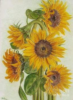 Sunflower arrangement by Ziba Bastani