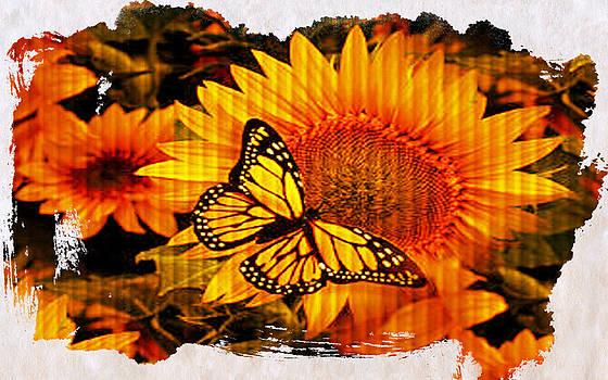 Debra  Miller - Sunflower Creation Monarch Butterfly