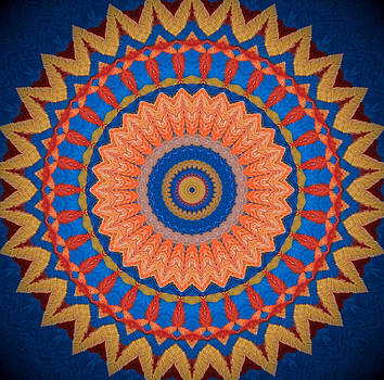 Sunflower Kaleidoscope 2 by Heather  Hubb