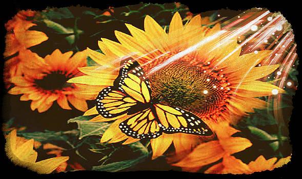 Debra  Miller - Sunflower Sun Monarch Butterfly
