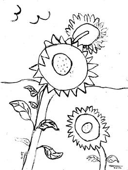 Sunflowers drawing by Thelma Harcum