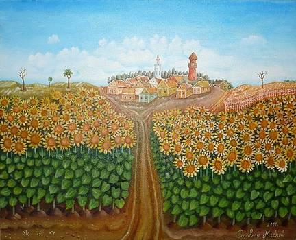 Sunflowers field by Michal Povolny