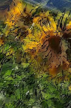 Sunflowers by Morgana Blackcat