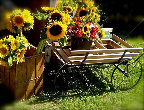 Sunflowers  by Susan Elise Shiebler