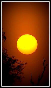 Anand Swaroop Manchiraju - SUNIN DIFFERENT MOODS