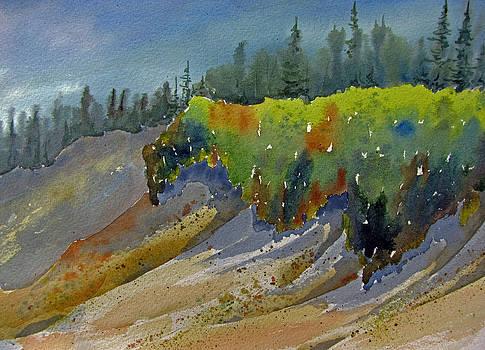 Sunlit Lichen by Ramona Kraemer-Dobson