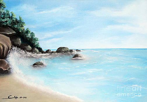 Sunny Day by Seth Corda