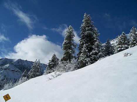 Sunny Snow Slope by FeVa  Fotos