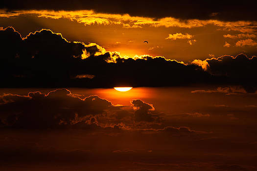 Sunrise by Alhaji Samura