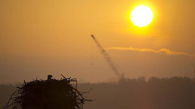 Sunrise by Bob Lennox