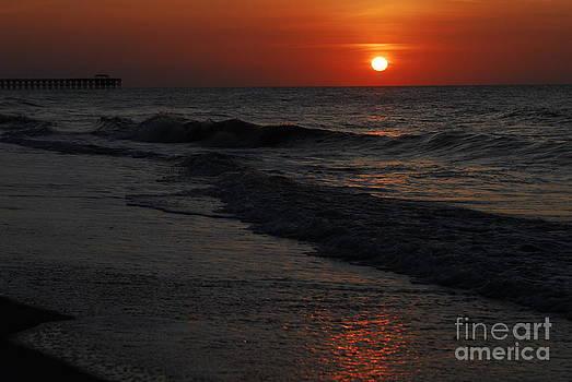Sunrise by Dale Daniel
