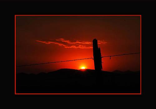 Sunrise Fire - Mat by Sheryl Cox