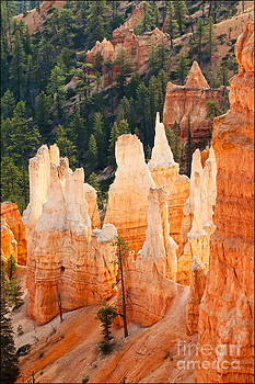 Sunrise Glow Bryce Canyon No2 by George Hodlin