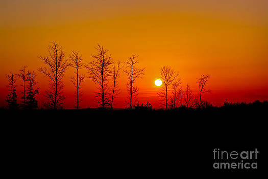 Sunrise in Pittsylvania County by Mark East
