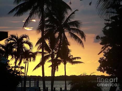 Sunrise in the Keys by Sandra Starling