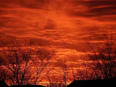 Sunrise by Ivana Smiljanec