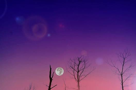 Emily Stauring - Sunrise Mooned
