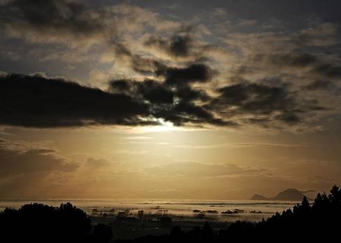 Sunrise Over Rangitaiki Plains by Judy Watson