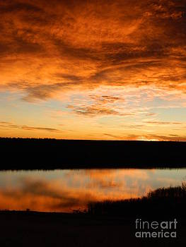 Sunrise reflections by Sara  Mayer
