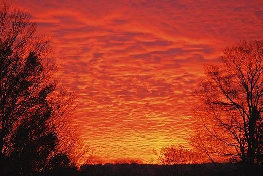 Sunrise by Ryan Louis Maccione