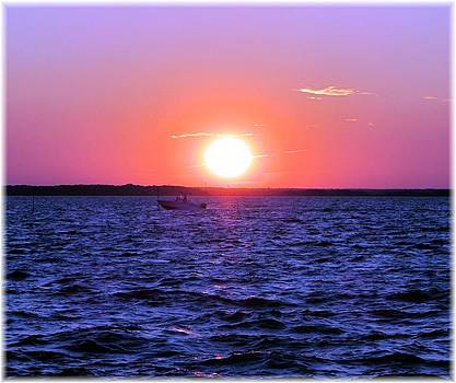 Susan Carella - Sunset -  Boat - Bay
