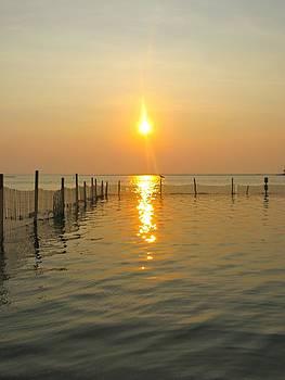 Sunset at Barnegat by Ann Kinney