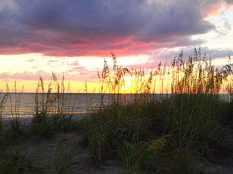 Sunset at Dog Beach by Leontine Vandermeer