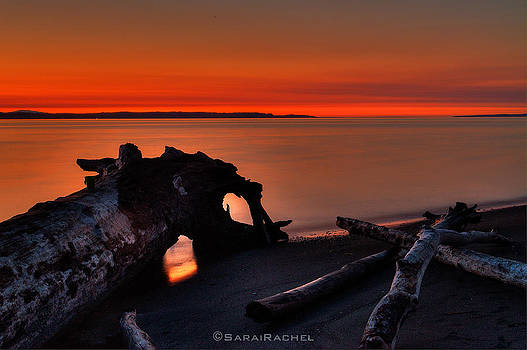 Sunset at Marina Beach Park in Edmonds Washington by Sarai Rachel