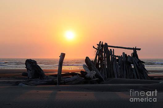 Sarah Schroder - Sunset at the beach