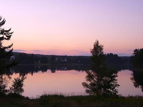 Sunset At The Lake by Sasha  Grebenyuk