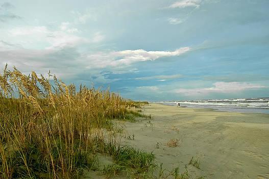 Summer Stroll by Don Mennig