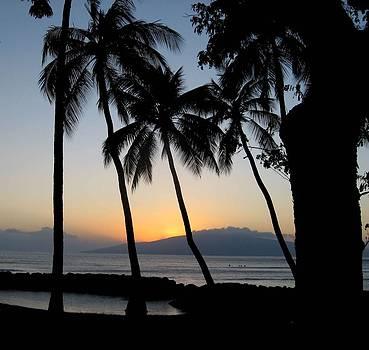 Sunset by Bella  Shots