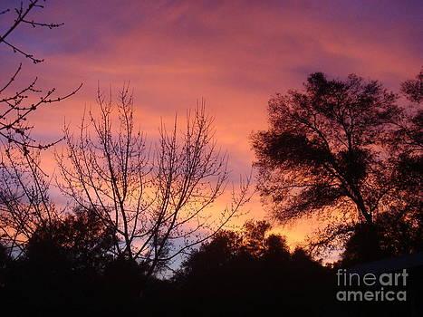Sunset by Catherine DeHart