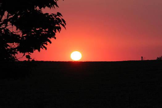 Sunset by David Sevior