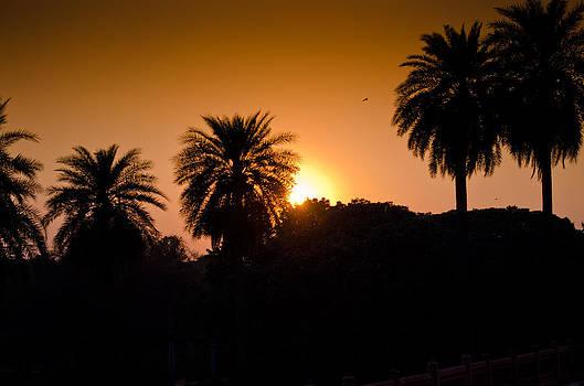 Sunset In Delhi by Sandeep Pandey