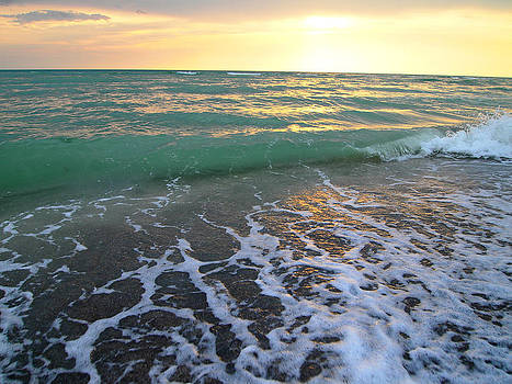 Sunset in Florida by Leontine Vandermeer