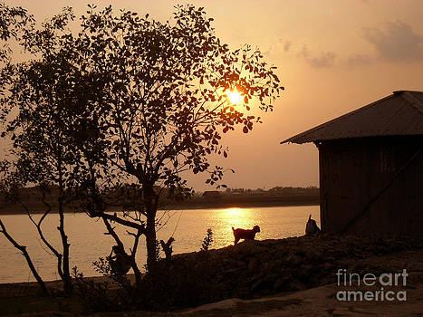 Sunset In My Village by Shah Aziz