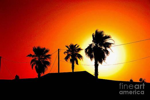 Susanne Van Hulst - Sunset in Port Aransas Texas