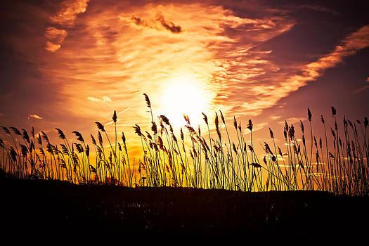 Sunset Inferno by Alhaji Samura