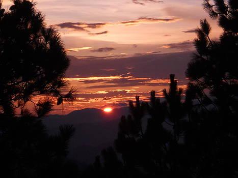 Sunset by Mamta Joshi