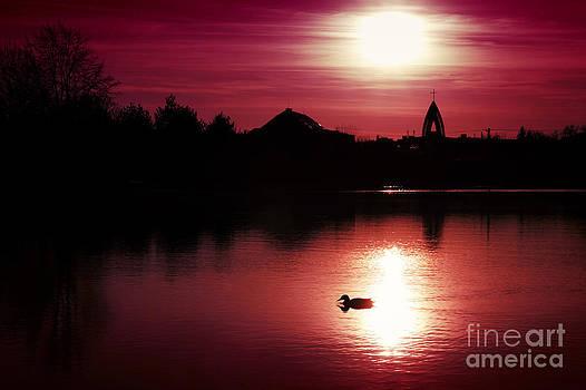Sunset by Martin Dzurjanik