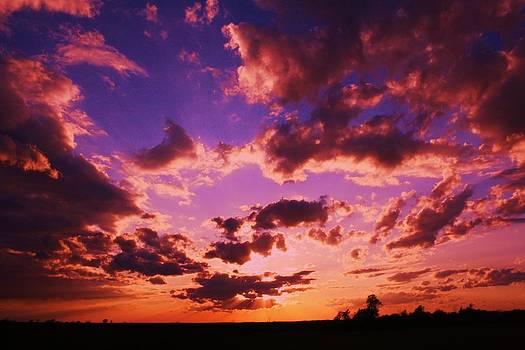Sunset by Michelle Ouellette
